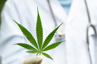Medical Marijuana at Zabrecky Institute of Biomedicine | Integrative and Functional Medicine